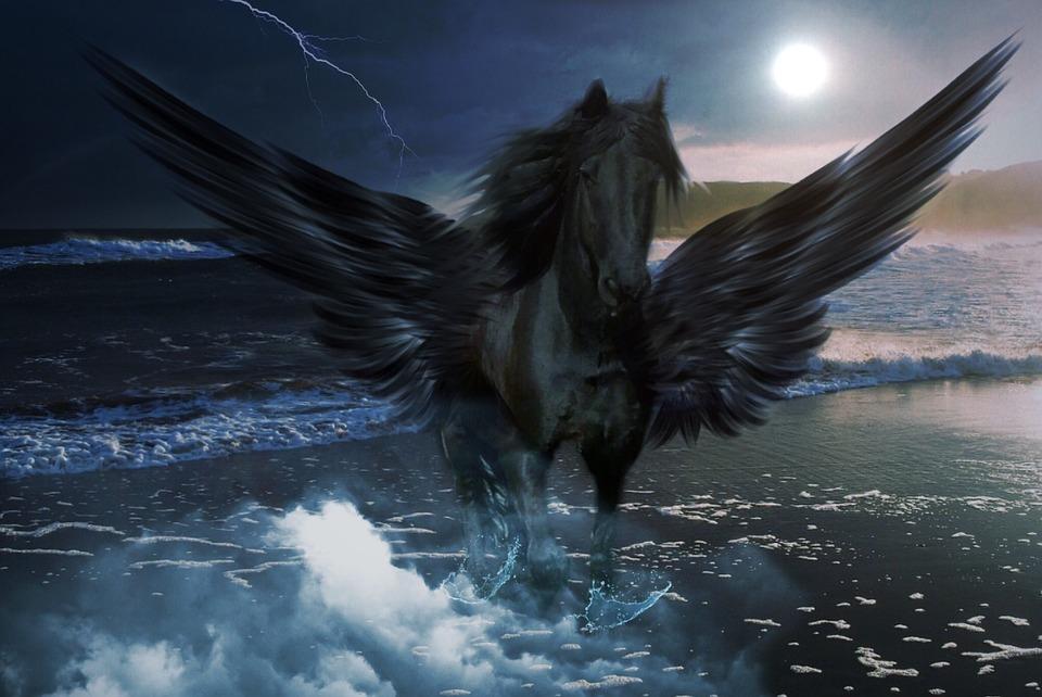 Anime Dark Angel Wallpaper Kostenloses Foto Pegasus Meer Wasser Himmel