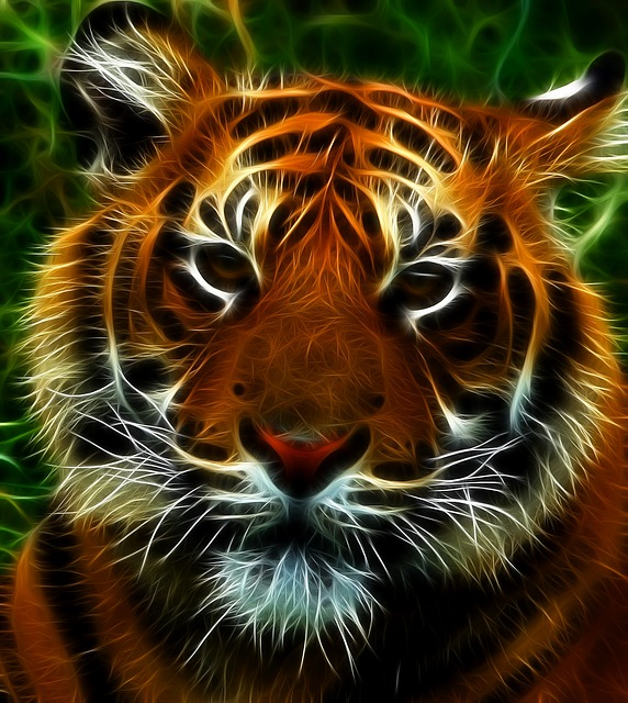 Cute Wallpaper Pictures Free Download Free Illustration Tiger Feline Cat Animals Animal