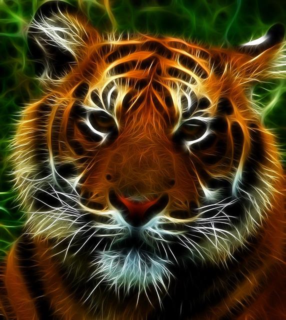 Wallpaper 3d 1080p Free Download For Mobile Free Illustration Tiger Feline Cat Animals Animal