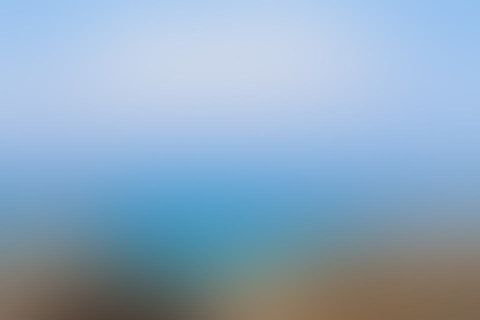Animals And Birds Wallpaper The Blurred Background Blur 183 Free Image On Pixabay