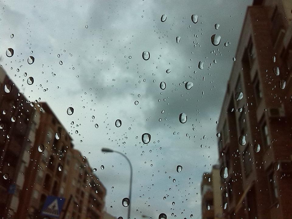 Black And Pink Wallpaper Free Photo Rain Drops City Streets Drizzle Free