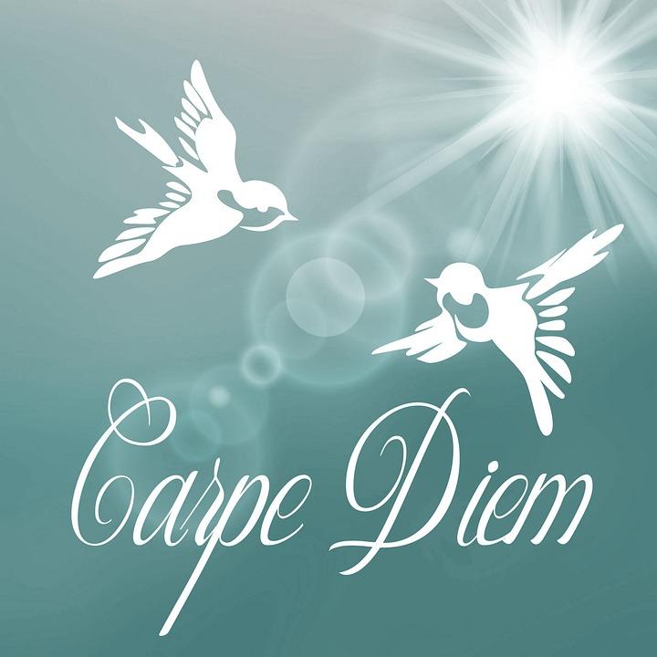 Business Inspirational Quotes Wallpaper Download Kostenlose Illustration Carpe Diem Nutze Den Tag