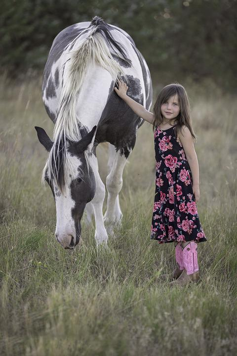 Wallpaper Happy Girl Free Photo Child Horse Animal Girl Fun Free Image
