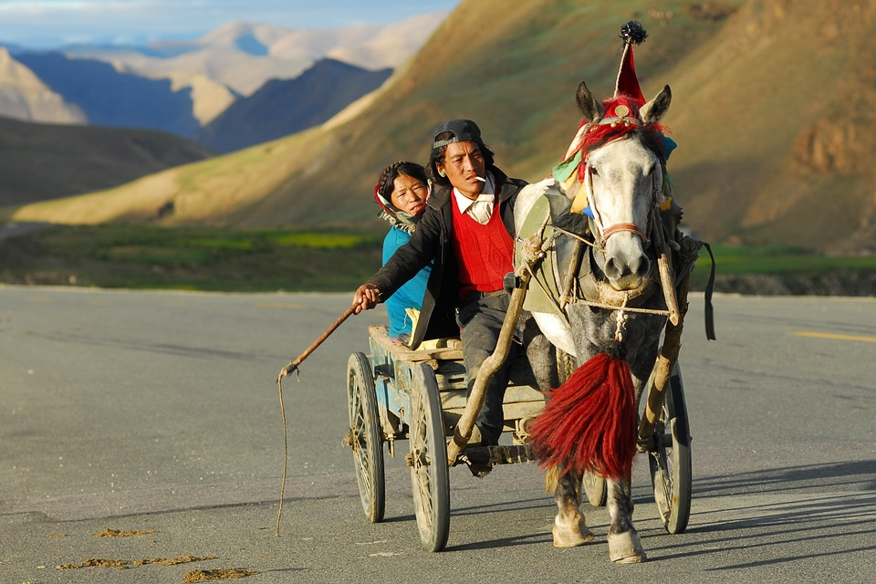 Medical Wallpaper Hd Photo Gratuite Tibet Transport Paysage Image Gratuite