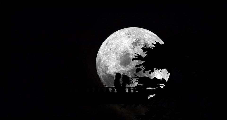 Black Wolf Wallpaper 문 밤 하늘 달 183 Pixabay의 무료 이미지