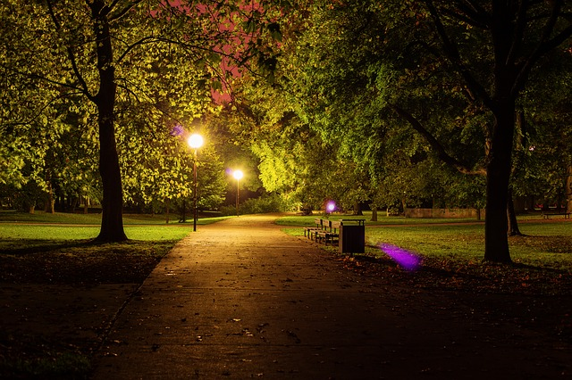Fall In Central Park Wallpaper Free Photo Night Park City Park Dark Free Image On