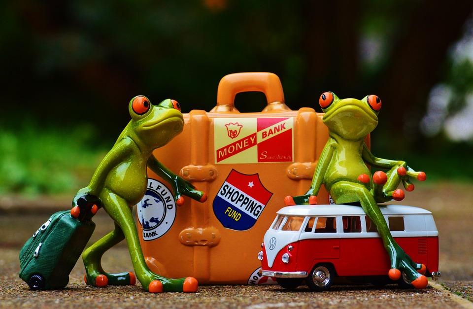 Car Wallpaper Download 2018 Frosch Reisen Urlaub 183 Kostenloses Foto Auf Pixabay