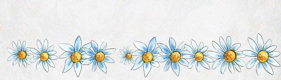 Summer Animal Wallpaper Banner Template Flowers 183 Free Image On Pixabay