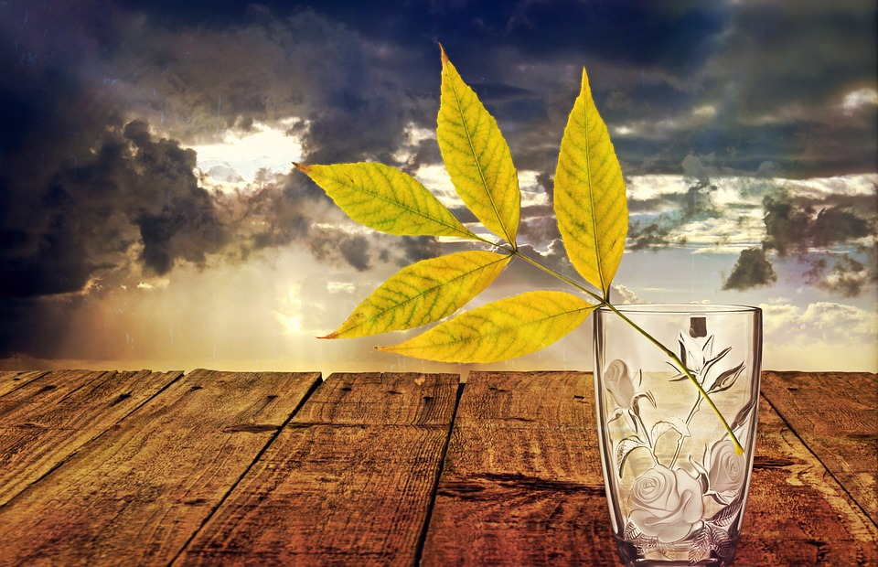 Animated Sky Wallpaper Free Photo Still Life Glass Vase Decoration Free
