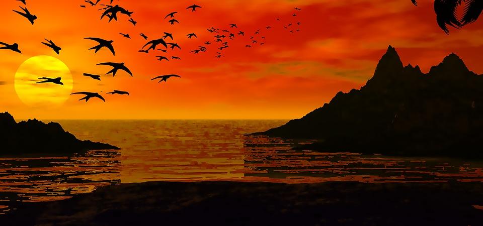 Heart Breaking Girl Wallpaper Coucher De Soleil Oiseaux 183 Image Gratuite Sur Pixabay