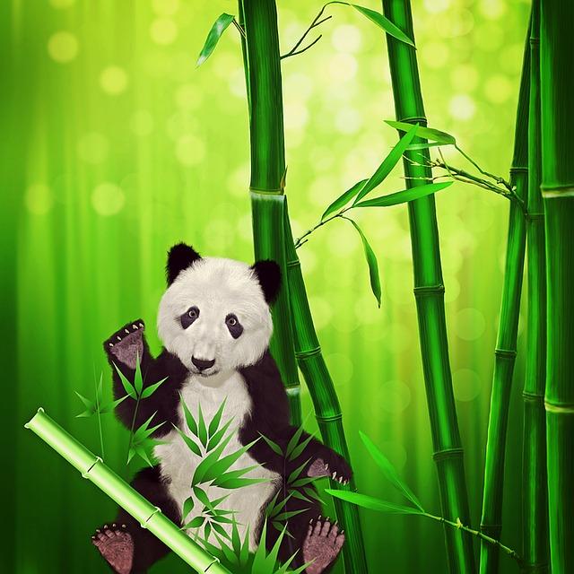 Fashion Cartoon Girl Wallpaper Free Illustration Panda Bear Panda Animal Bamboo