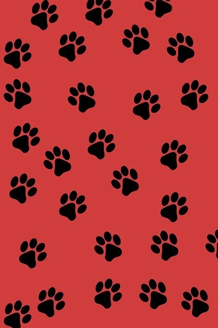Cute Science Wallpaper Free Illustration Paw Prints Background Animal Paw