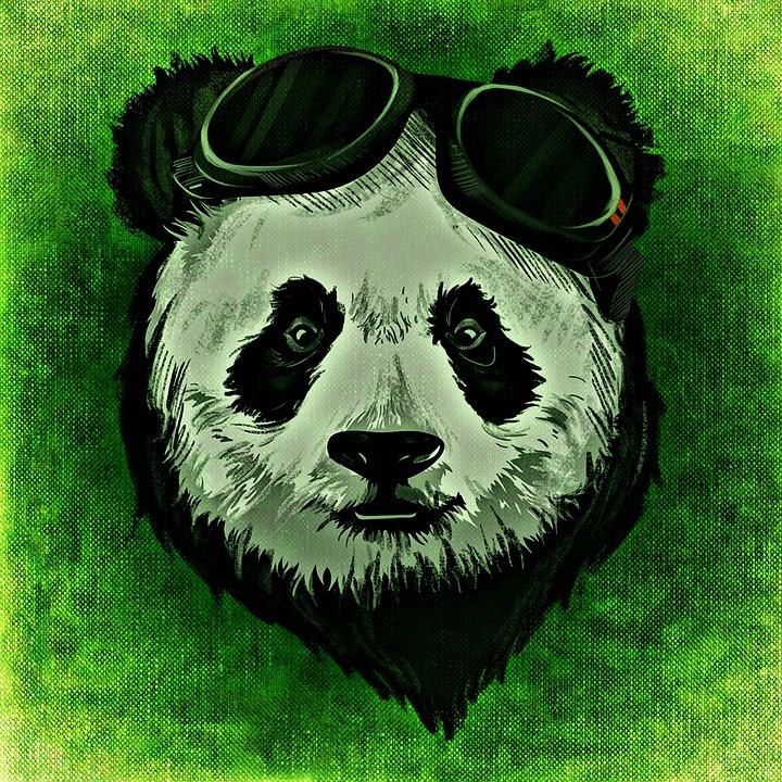 Abstract Art Wallpaper Hd Panda Animal Wild 183 Free Image On Pixabay