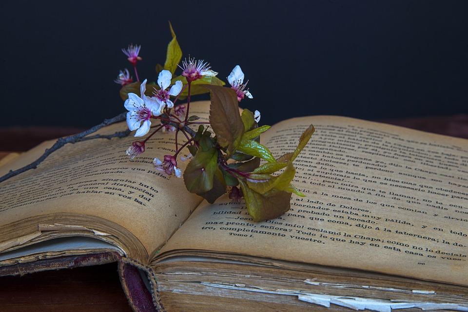 Farm Girl Wallpaper Old Books Book 183 Free Photo On Pixabay