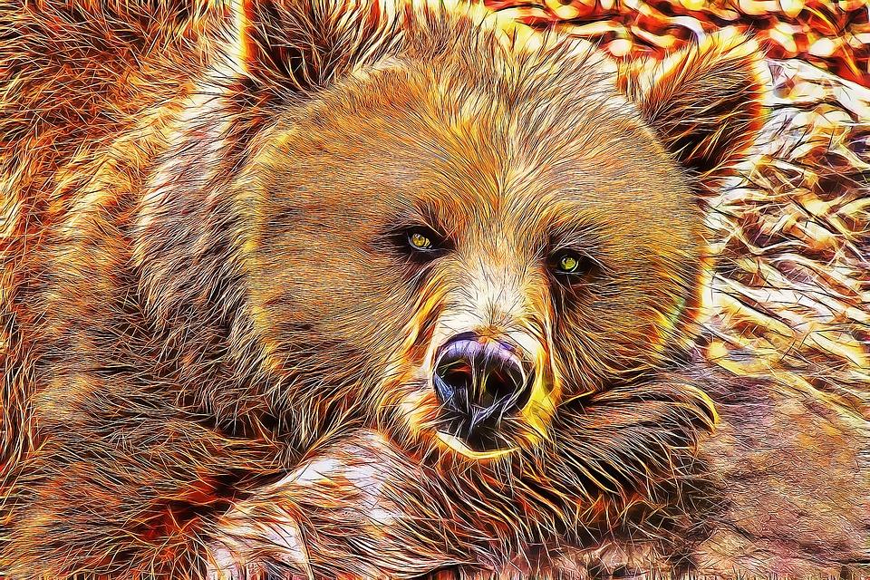 Black And Gold Wallpaper Free Illustration Bear Bear Fractal Bear Art Free