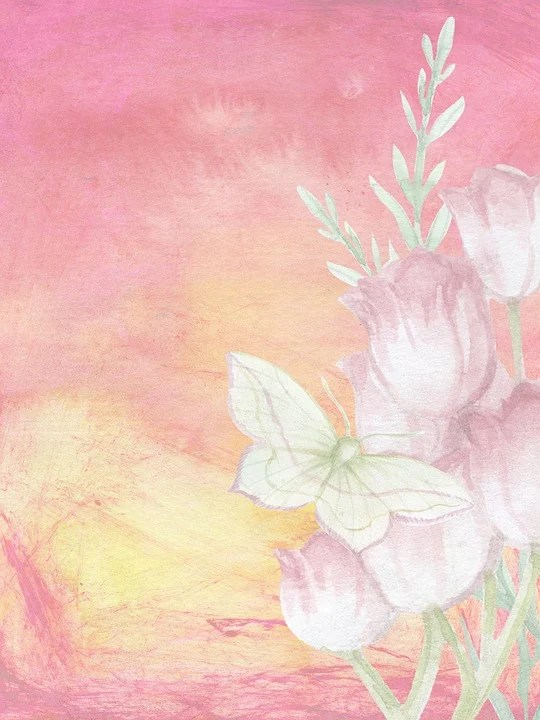 Lady Butterfly Hd Wallpaper Free Illustration Background Romantic Butterfly Free