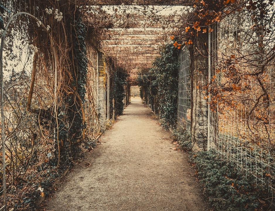 Fall Wallpaper 4k Kostenloses Foto Romantisch Tunnel Geschichte