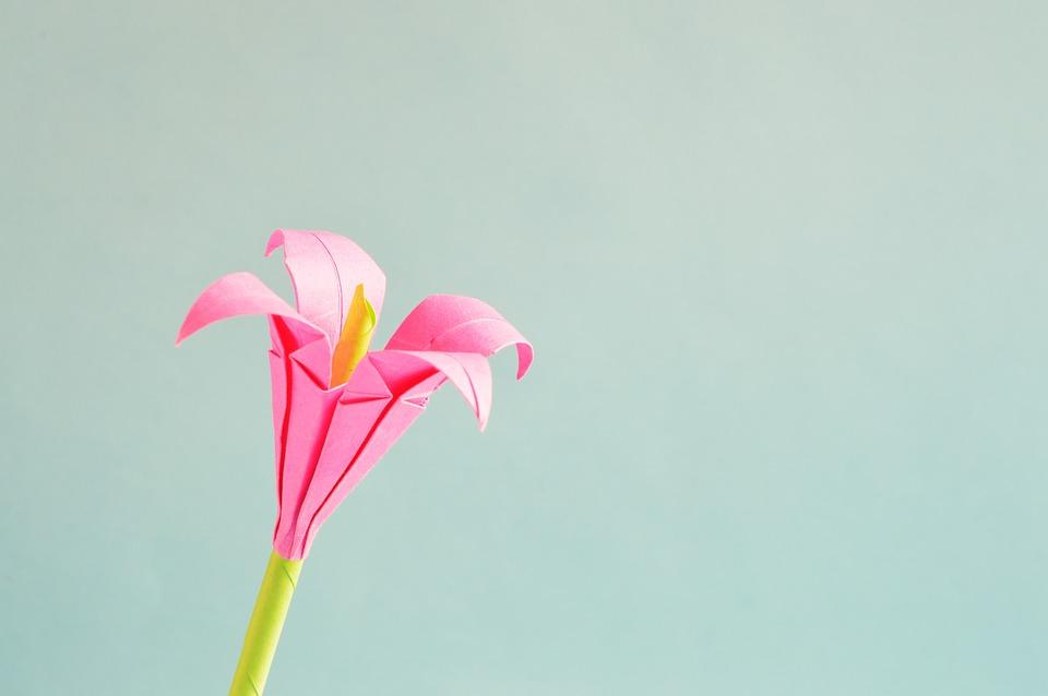 Beautiful Girl Eyes Wallpaper Origami Flower Art 183 Free Photo On Pixabay