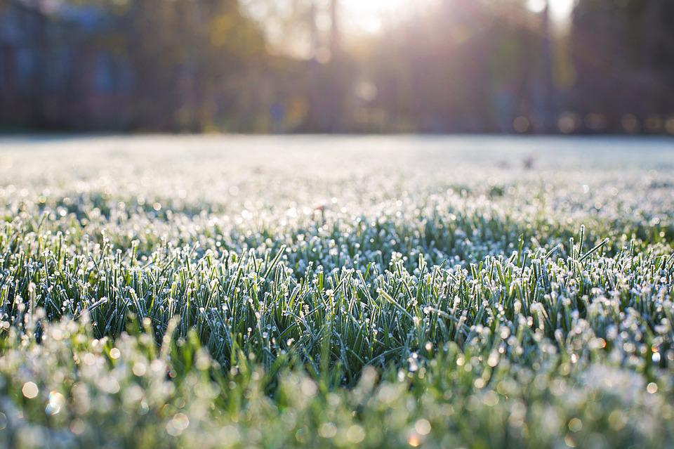 Free Early Fall Wallpaper Free Photo Frost On Grass Early Morning Free Image On