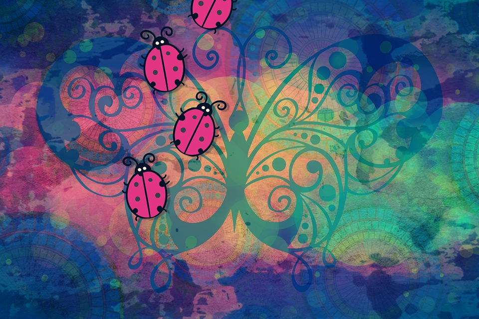 Beautiful Butterfly Girl Wallpaper Background Colorful Bugs Screen 183 Free Image On Pixabay
