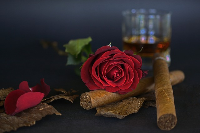 3d Valentine Wallpapers Free Free Photo Rose Red Rose Cigar Free Image On Pixabay
