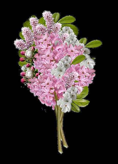 Cartoon Fall Wallpaper Flowers Bouquet Of 183 Free Photo On Pixabay