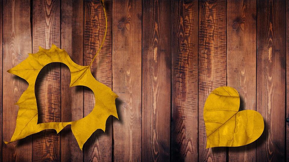 Maple Leaf Wallpaper For Fall Season Free Illustration Heart Leaf Love Wood Autumn Free