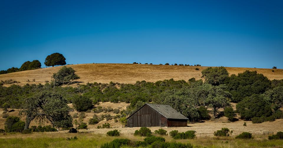 Animal Farm Wallpaper Free Photo California Countryside Rural Free Image On