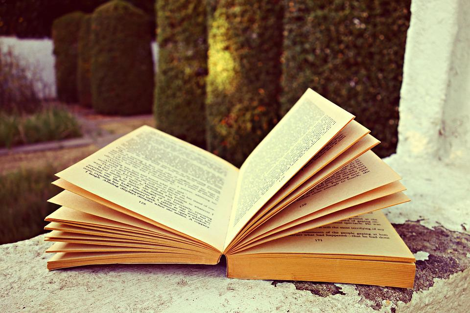 Book Pages Open - Free photo on Pixabay