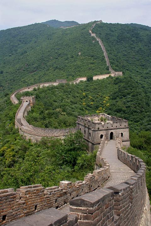 Tiger Animal Wallpaper Big Wall China 183 Free Photo On Pixabay