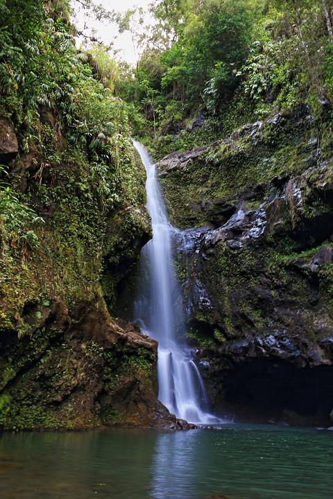 Natural Falls Wallpaper Free Download Free Photo Waterfall Maui Vacation Scenic Free Image