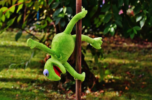 Crown Hd Wallpaper Pole Dance Kermit Funny Soft 183 Free Photo On Pixabay