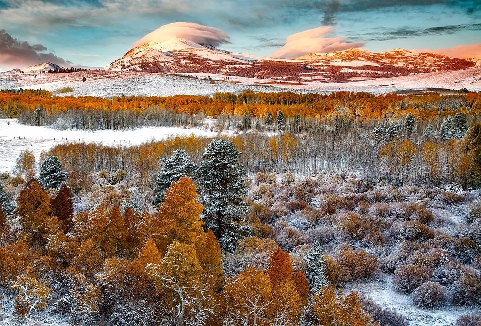 Fall Season Computer Wallpaper Yosemite National Park California 183 Free Photo On Pixabay