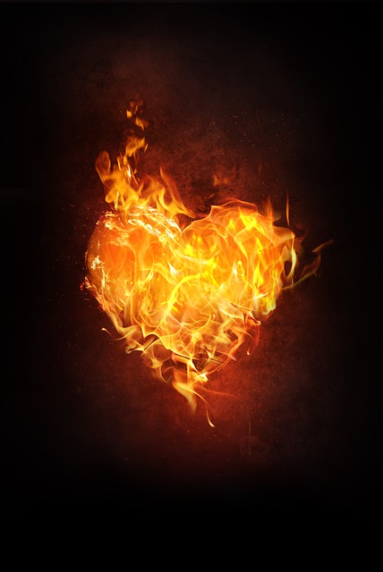 Cute 3d Flower Wallpaper Heart Fire Flame 183 Free Image On Pixabay