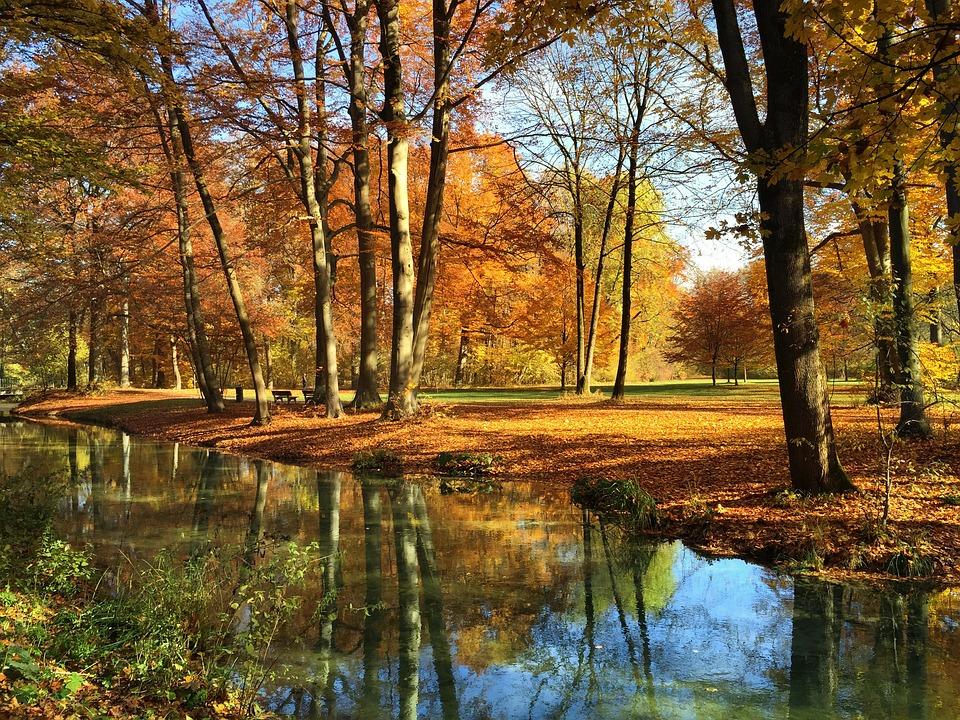 Free Hd Wallpaper Fall Munich English Garden Autumn 183 Free Photo On Pixabay