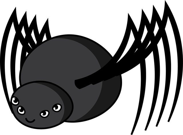 Funny Girl Wallpaper Images Friendly Spider Black 183 Free Image On Pixabay