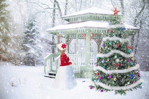 4,000+ Free Christmas Tree  Christmas Images - Pixabay
