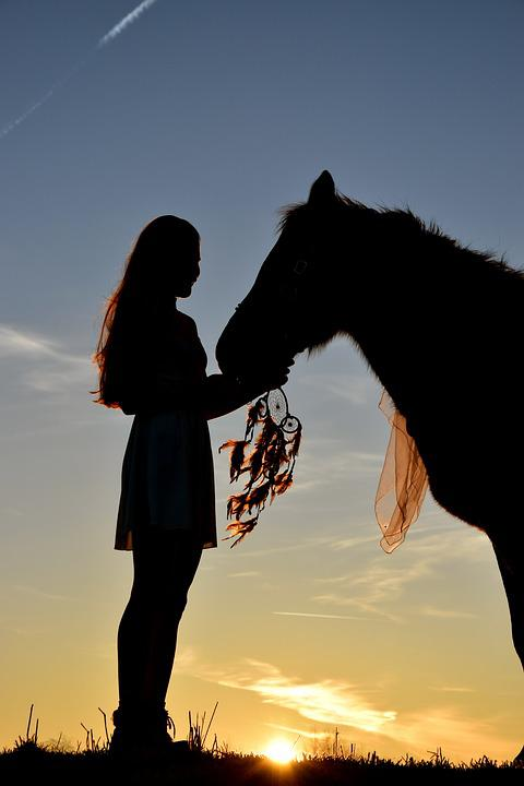 Fake Quotes Wallpaper Free Photo Sunrise Silhouette Horse Free Image On