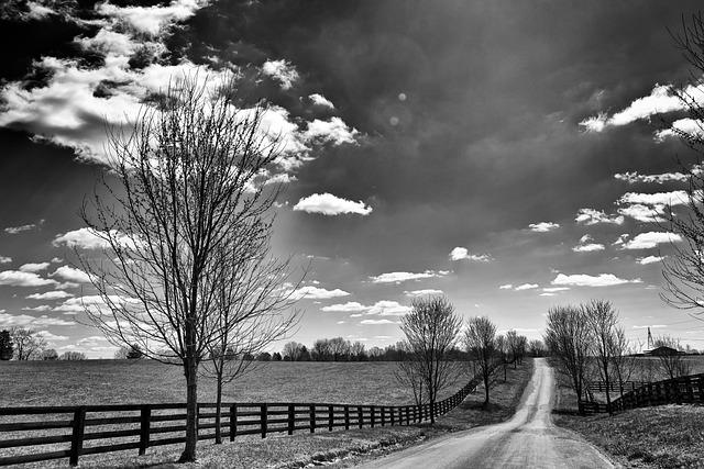 Kentucky Fall Wallpaper 2017 Landschaft Schwarzweiss Monochrom 183 Kostenloses Foto Auf