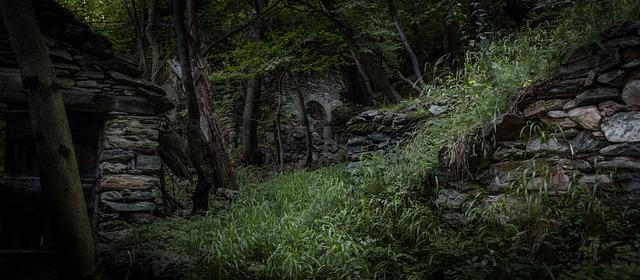 Tiger Cute Drawing Wallpaper Jungle Ruin Ruins 183 Free Photo On Pixabay