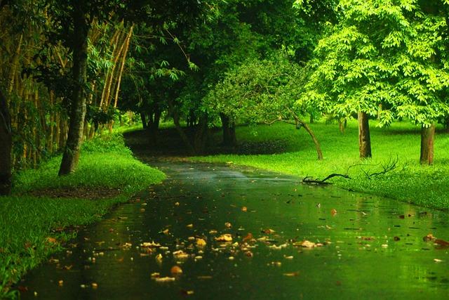 Fall Animated Wallpaper Windows 7 Landscape Nature Green 183 Free Photo On Pixabay