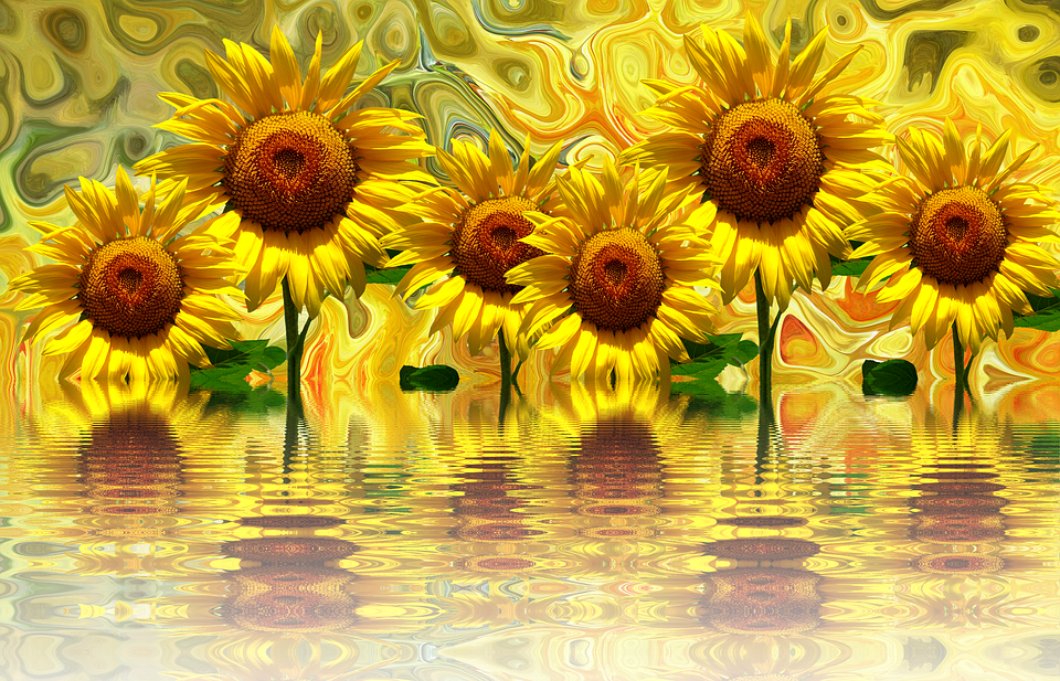 Fall Landscape Wallpapers Free Sunflower Summer Flora Late 183 Free Image On Pixabay