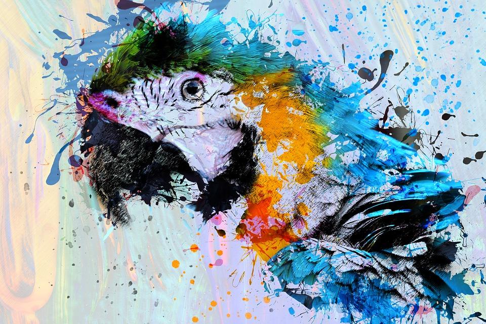 Lion Animal Wallpaper Free Illustration Bird Parrot Animal Art Abstract