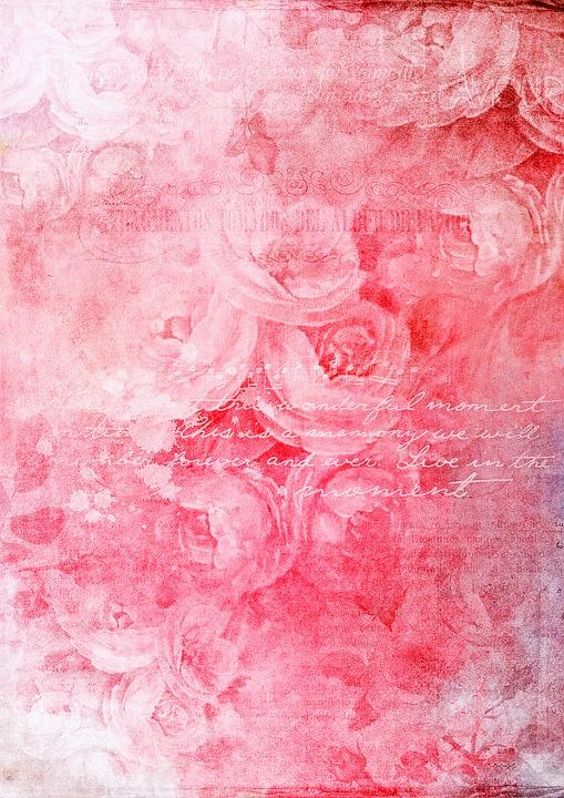 Rose Flower Wallpaper Hd Free Download Scrapbook Paper Texture 183 Free Image On Pixabay