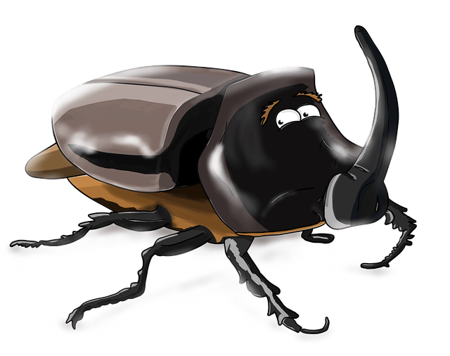 Animals In Suits Wallpaper Beetle Rhino Insect 183 Free Image On Pixabay