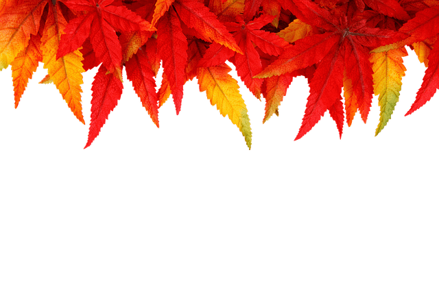 Fall Ombre Wallpaper Background Autumn Leaves Fall 183 Free Photo On Pixabay