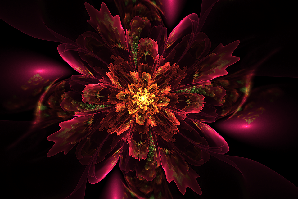 Pc Wallpaper 3d Love Floral Fractal Glow 183 Free Image On Pixabay