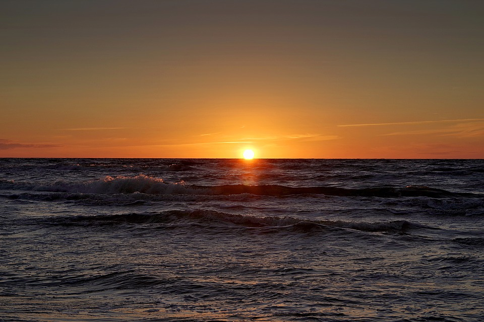 Black Rose Wallpaper Free Download Free Photo Sunset Sea Beach Cloudless Sky Free