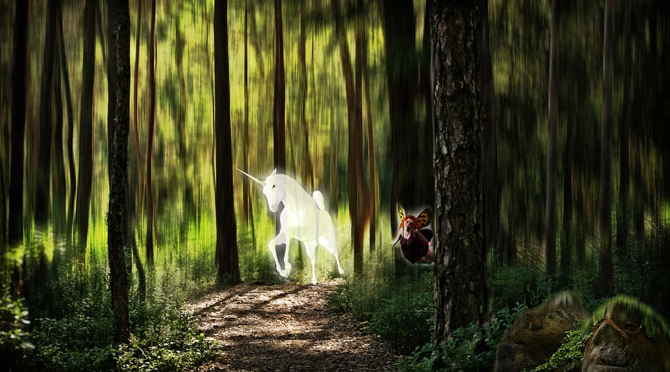 Mythical Creatures In The Fall Wallpaper Elf Forest Unicorn Fantasy 183 Free Photo On Pixabay