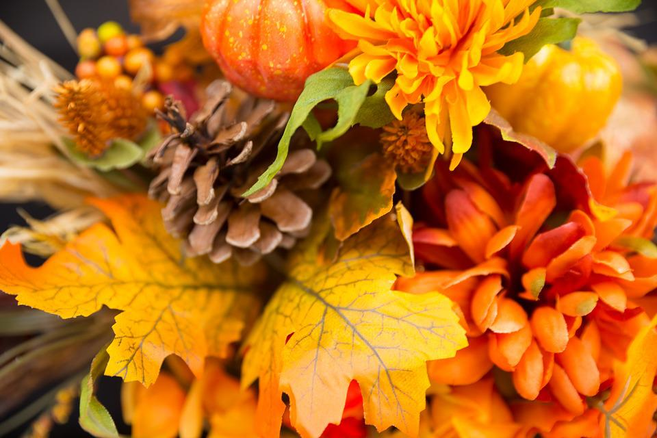 Beautiful Fall Paintings Wallpapers Fall Flowers Thanksgiving 183 Free Photo On Pixabay